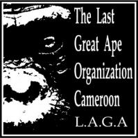 LAGA Cameroon Annual Report 2015