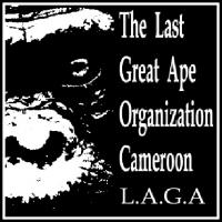 Link to LAGA Cameroon