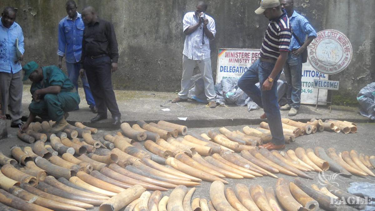 One tonne of ivory seized, 3 military personnel jailed
