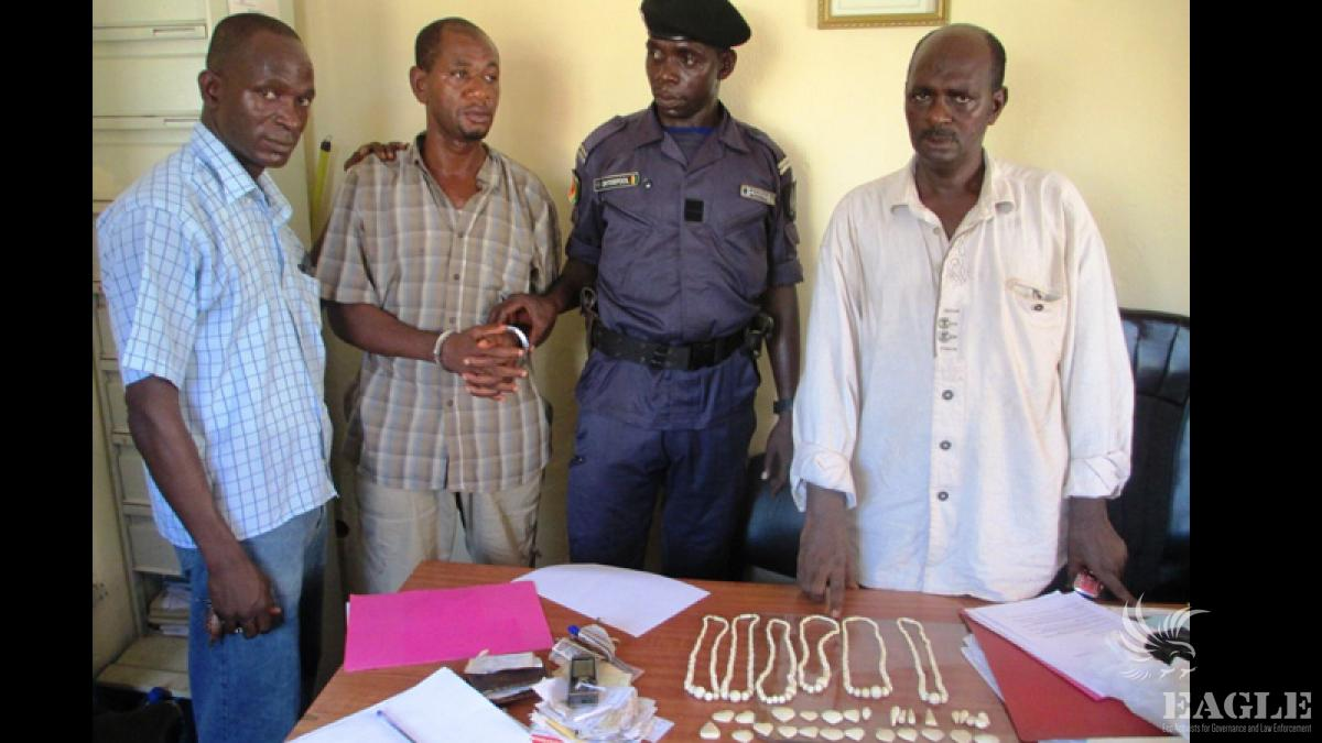 November 28, 2013: Trafficker arrested with ivory in Conakry