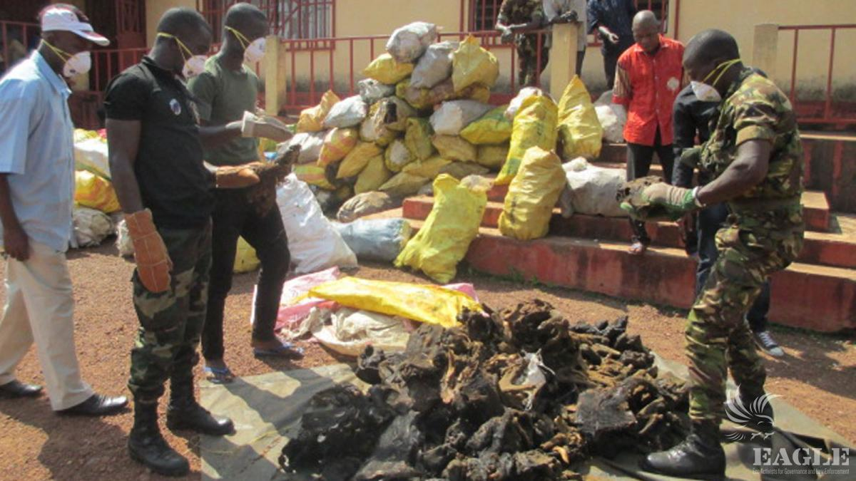 November 29, 2014: 5 traffickers arrested with 2 tons of bushmeat in Ebola Period, one sentenced to 3 year imprisonment.