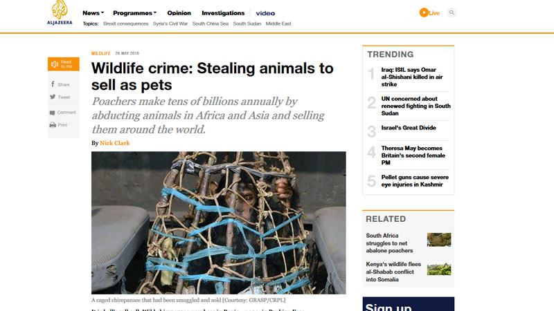 Wildlife crime: Stealing animals to sell as pets