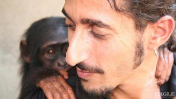 Ofir with orphaned chimp baby