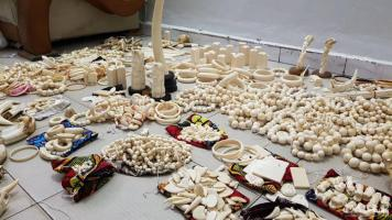 2 international traffickers arrested with 780 carved ivory items