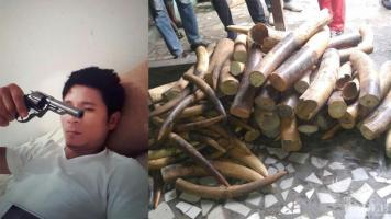 Crackdown on a Vietnamese Ivory Criminal Syndicate