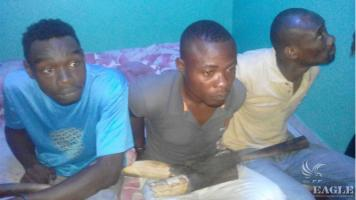 3 arrested with Ivory and an elephant tail