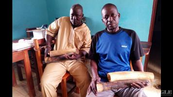 2 ivory traffickers, both Senegalese, arrested with 2 ivory tusks
