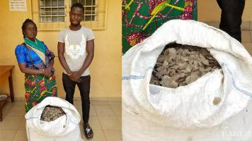 2 traffickers arrested with 37 kg of pangolin scales