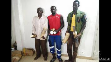 3 Senegalese traffickers arrested with two tusks