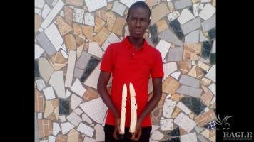 An ivory trafficker arrested with two carved tusks