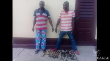 2 human bones traffickers arrested