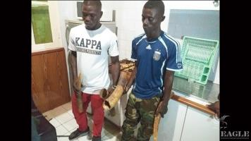 2 ivory traffickers, one of them corrupt military man, arrested with two tusks