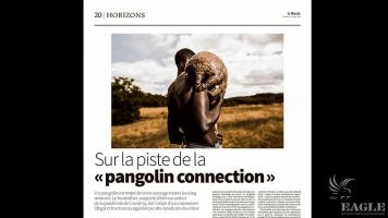 On the trail of the pangolin connection