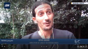 Interview with Ofir on i24news on illegal trade with pangolins