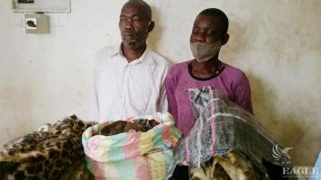 2 traffickers arrested with two leopard skins
