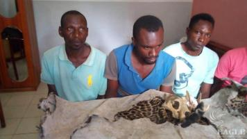 3 traffickers arrested with a leopard skin and skull