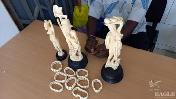 A trafficker arrested with carved ivory