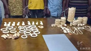 3 ivory traffickers arrested with 166 pieces of sculpted ivory