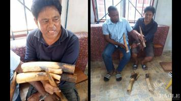 2 traffickers including a Filipino national arrested with 4 tusks