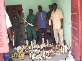 April 2004, Guinea: ivory dealer arrested