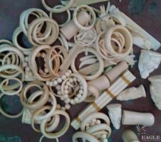 November 2014, Congo: 2 ivory traffickers arrested in Pointe-Noire with 7 kg of carved ivory.