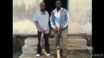 2 elephant poachers arrested