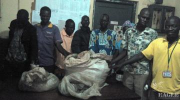 9 traffickers of pangolin scales arrested at once