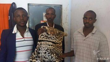 3 Rwandese  with a leopard skin