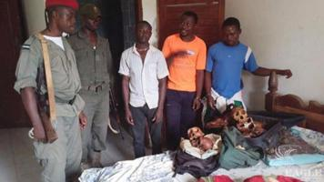 3 traffickers arrested with 12 ape skulls
