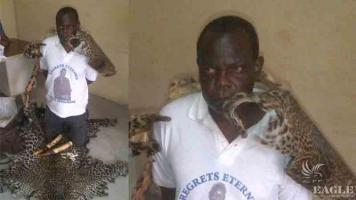 2 ivory traffickers arrested