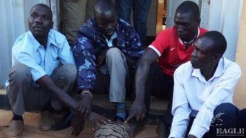 4 traffickers arrested with two giant pangolins